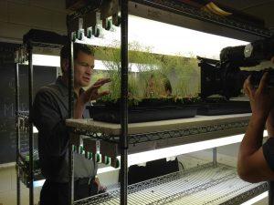 Bomb Detecting Arabidopsis