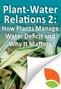 plantwater2
