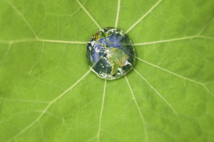 world droplet - iStock_000008790340Medium[1]