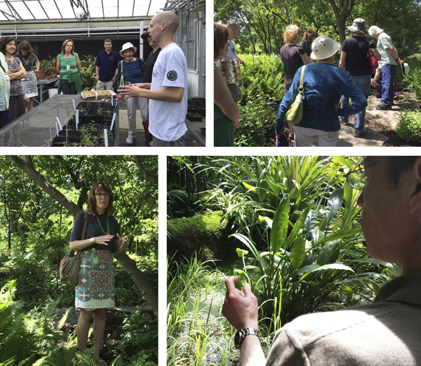 Missouri botanical garden a fascinating fopd update plant science today for Missouri botanical garden jobs