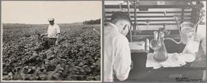 FarmSecurityAssociation
