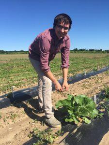 Kevin harvesting leaf tissue in Geneva [ph: J Labatte]