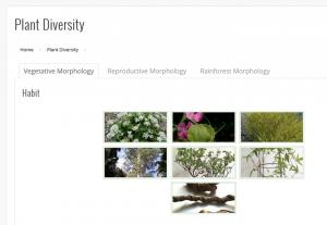 PlantDiversity