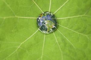 world droplet - iStock_000008790340Medium[1]
