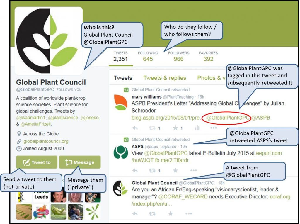The profile page of Twitter user @GlobalPlantGPC