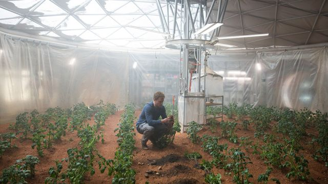 Botanist Mark Watney (Matt Damon) with his Martian food supply